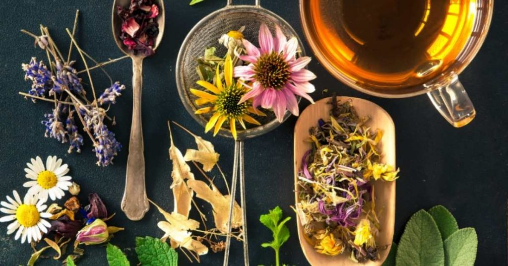What Is The Difference Between Tea And Tisane